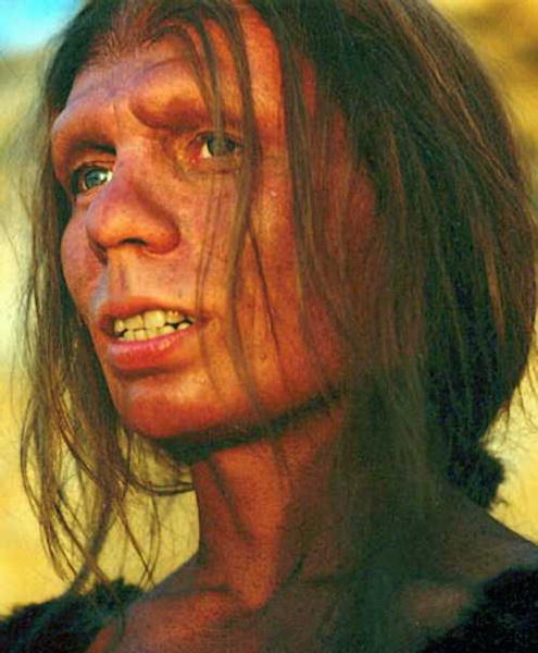 Homo Sapiens Neanderthalensis: Same Species, Us.