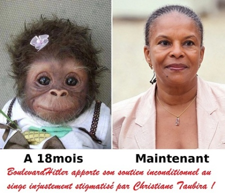 Don't Ape Me. Publish This In France, Go To Jail