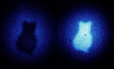 Cat Seen From Entanglement, Not Light (!)