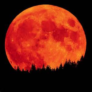 No Moon, No Trees? 4 Billions Year Ago, Moon Was Red Hot Liquid Rock