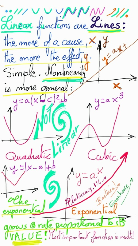 Linearity Is The Penultimate Mathematical Simplification