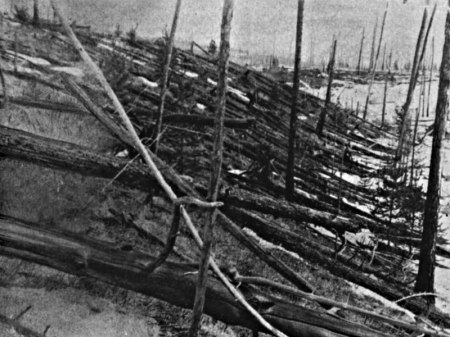 Tunguska, 23 Years After The Explosion. 80 Million Trees Were Destroyed