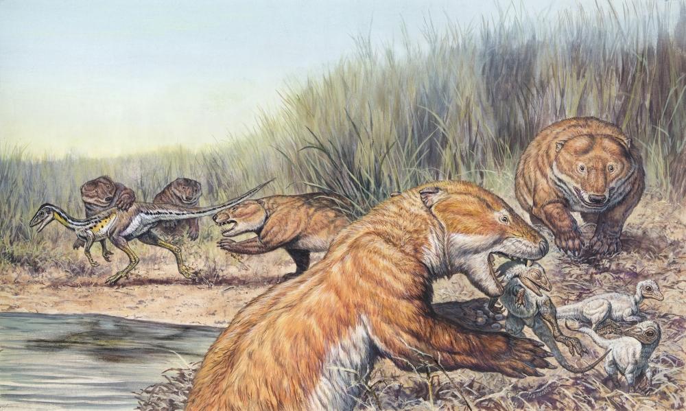 Repenomamus Mammals Hunting for Dinosaur Prey during the Mid-Jurassic Period of Europe.