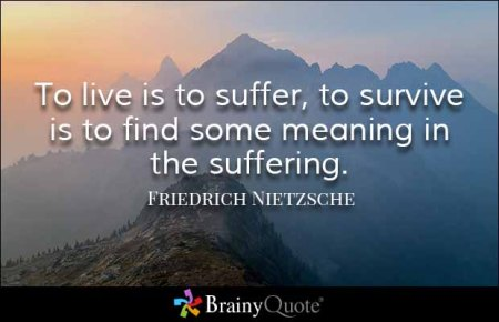 No Suffering, No Meaning?